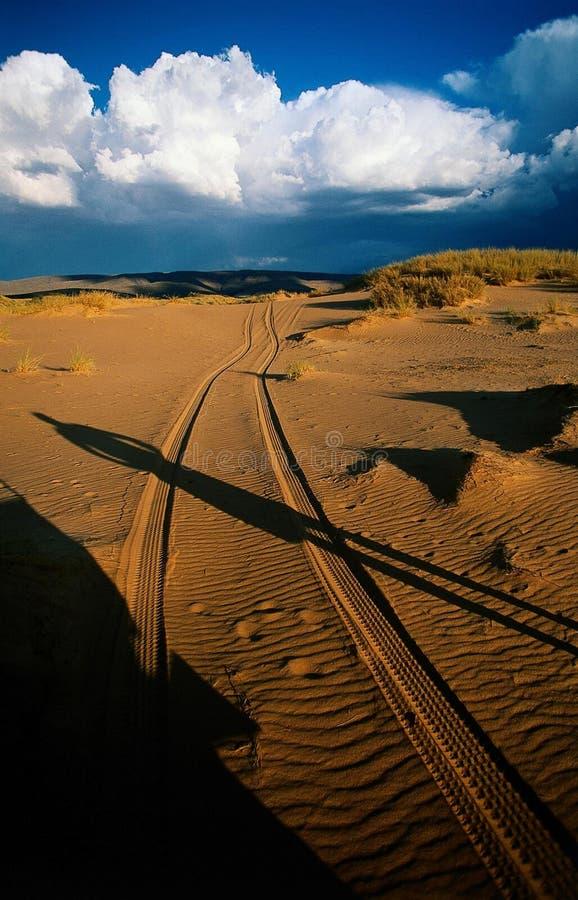 沙漠日落跟踪 库存照片