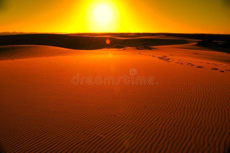 Download 沙漠日落 库存图片. 图片 包括有 沙漠, 昏暗, 天空, 破晓, 沙子, 金黄, 照亮, 本质, 日落 - 22353655