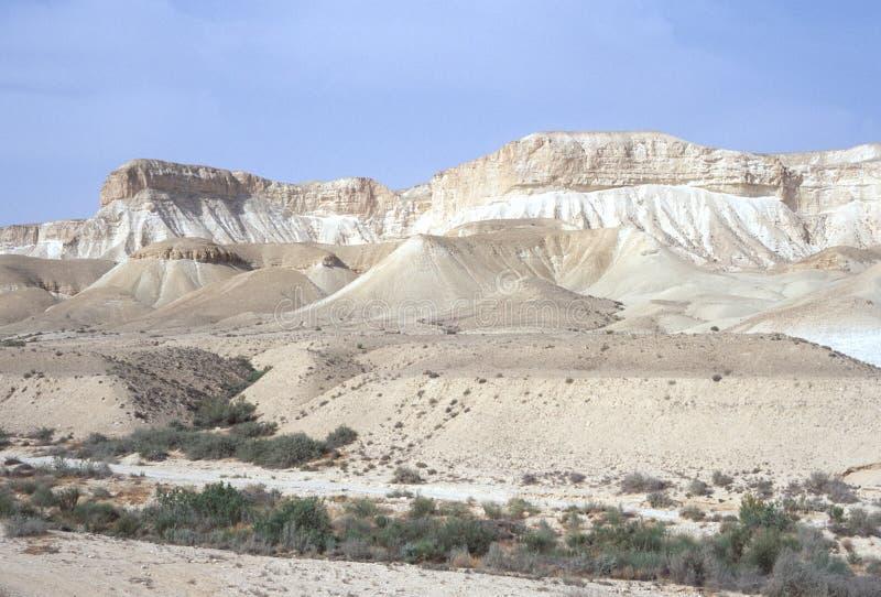 沙漠旱谷 免版税图库摄影