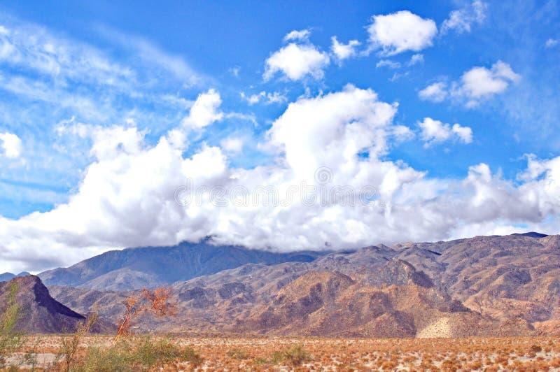 沙漠景色 图库摄影