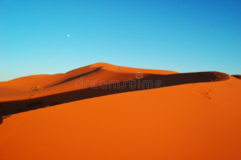 沙漠月亮 免版税库存照片