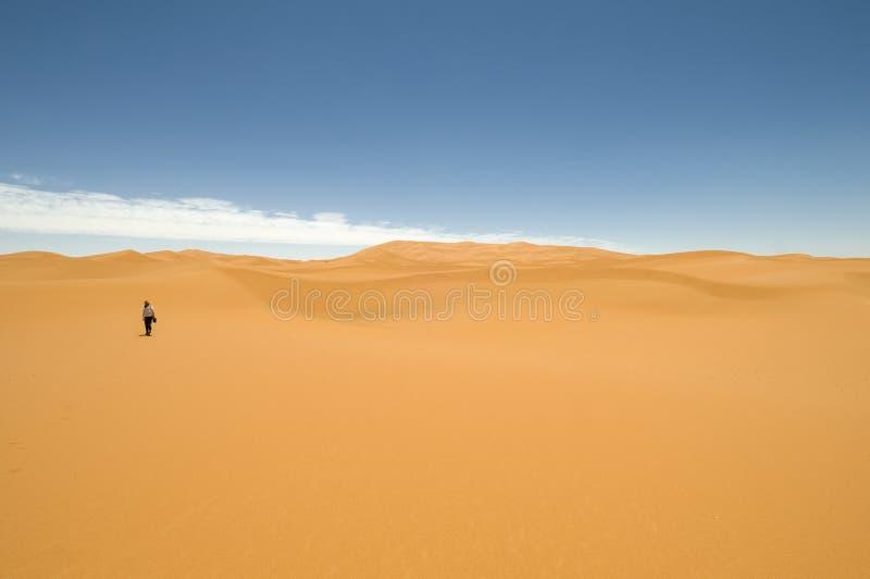 沙漠步骤 库存图片