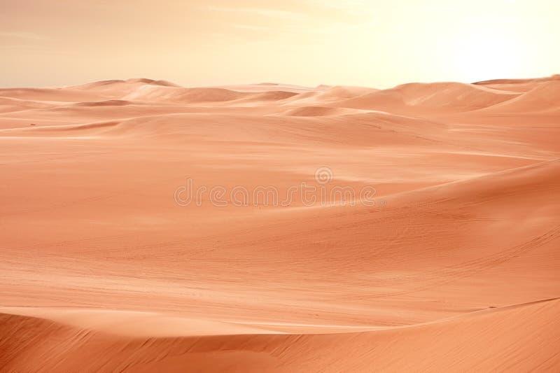 沙漠沙丘埃及撒哈拉大沙漠日落 库存照片