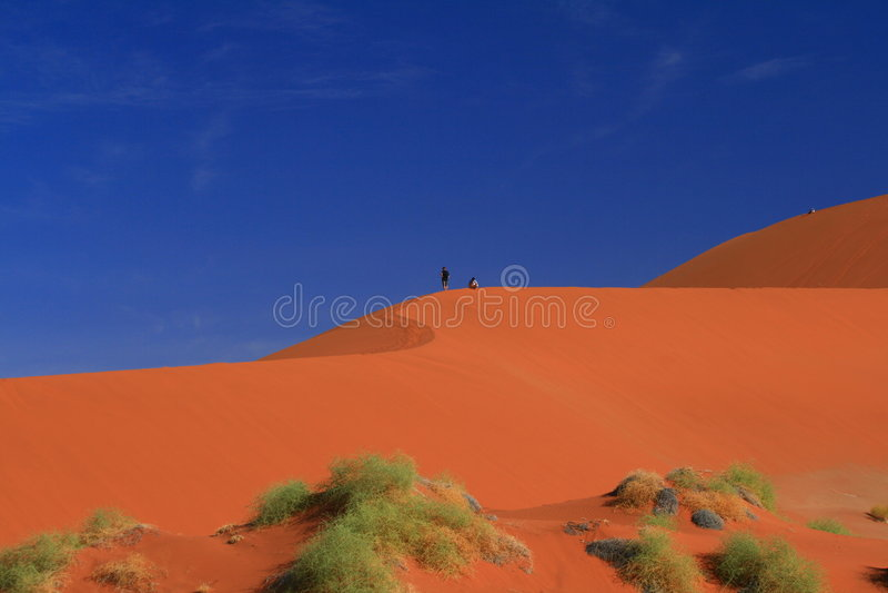 沙漠沙丘纳米比亚红色 免版税库存照片