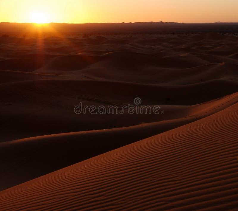 沙漠沙丘铺沙日落 免版税库存图片