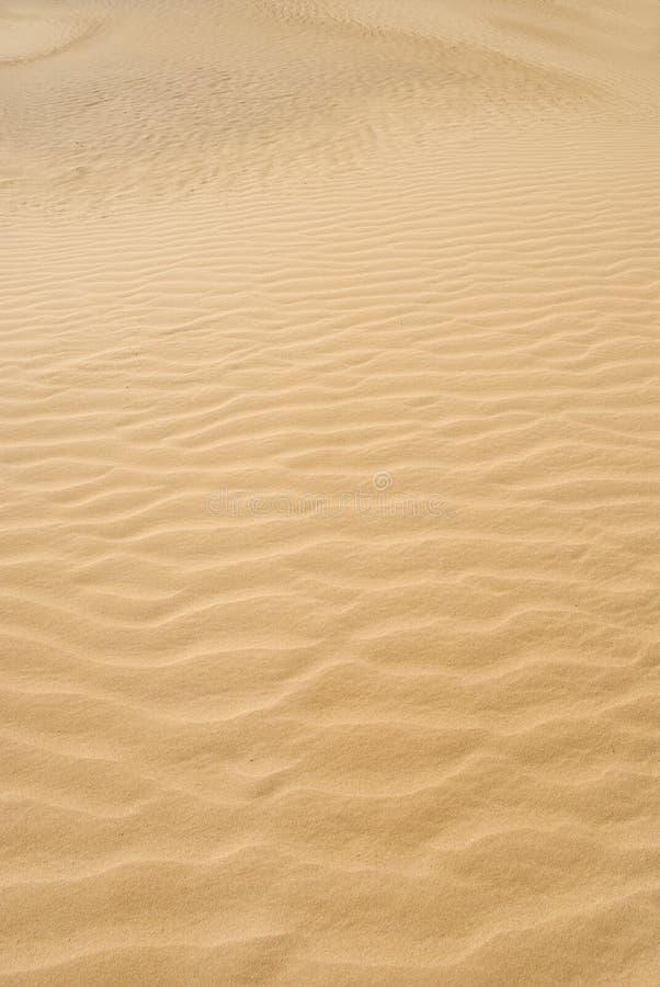 沙漠沙子纹理 免版税图库摄影