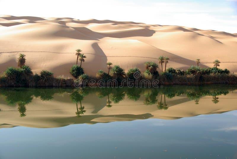 沙漠湖利比亚 免版税图库摄影