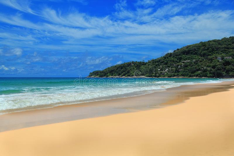 沙漠热带海岛 免版税库存图片