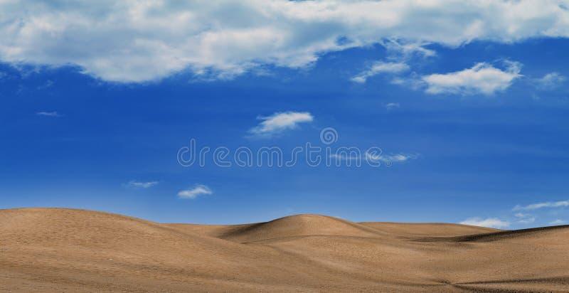 沙漠热期间 免版税库存照片