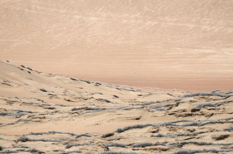 沙漠的不尽的沙子 免版税库存图片