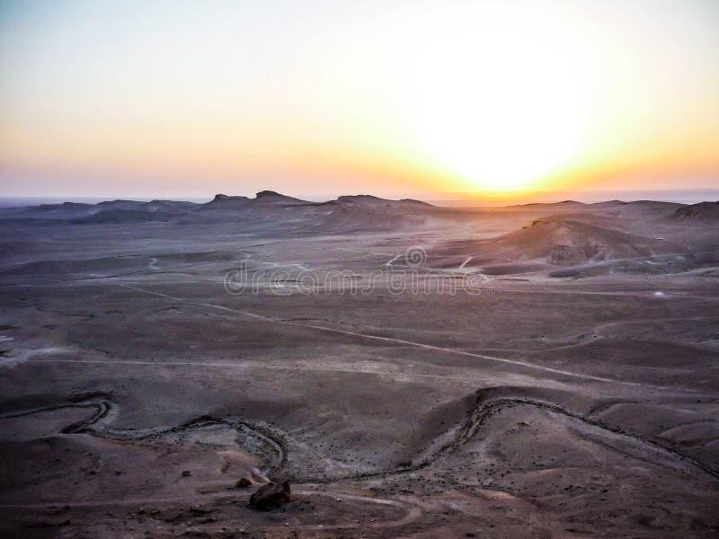 沙漠的风景在扇叶树头榈,叙利亚附近的 库存图片