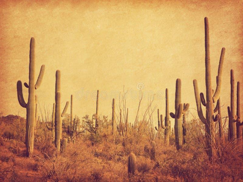 沙漠的风景用柱仙人掌仙人掌 在减速火箭的样式的照片 增加的纸纹理 被定调子的图象 免版税库存照片