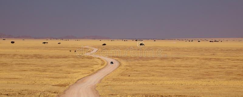 沙漠纳米比亚路 免版税库存照片