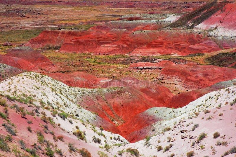 沙漠绘了 免版税库存图片
