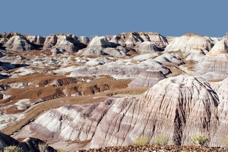 沙漠绘了 库存图片