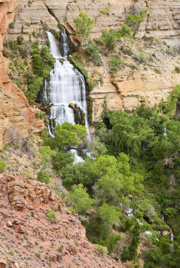 沙漠绿洲瀑布 免版税库存照片