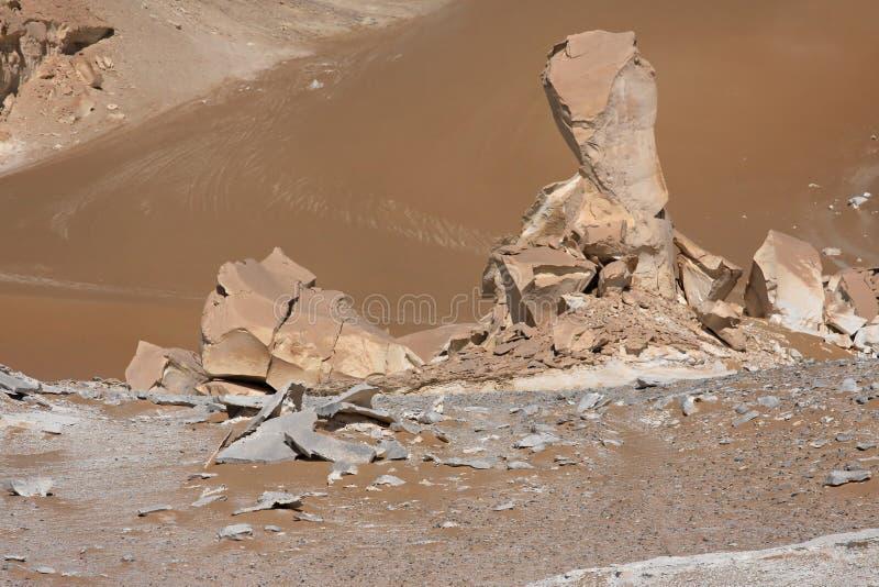 沙漠西方埃及的利比亚 库存照片