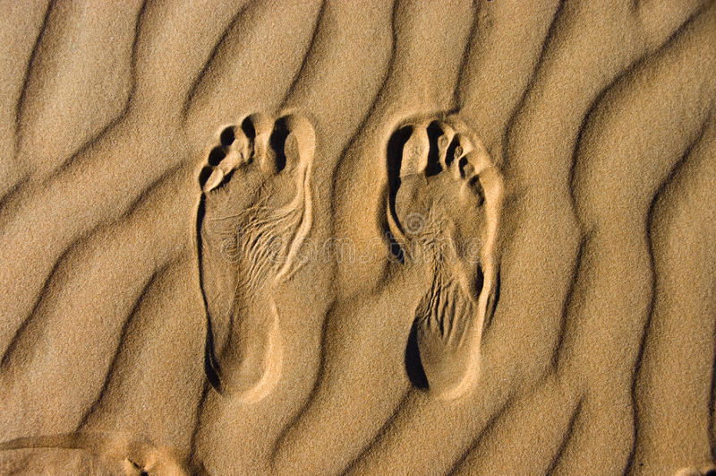 沙漠走 免版税库存图片