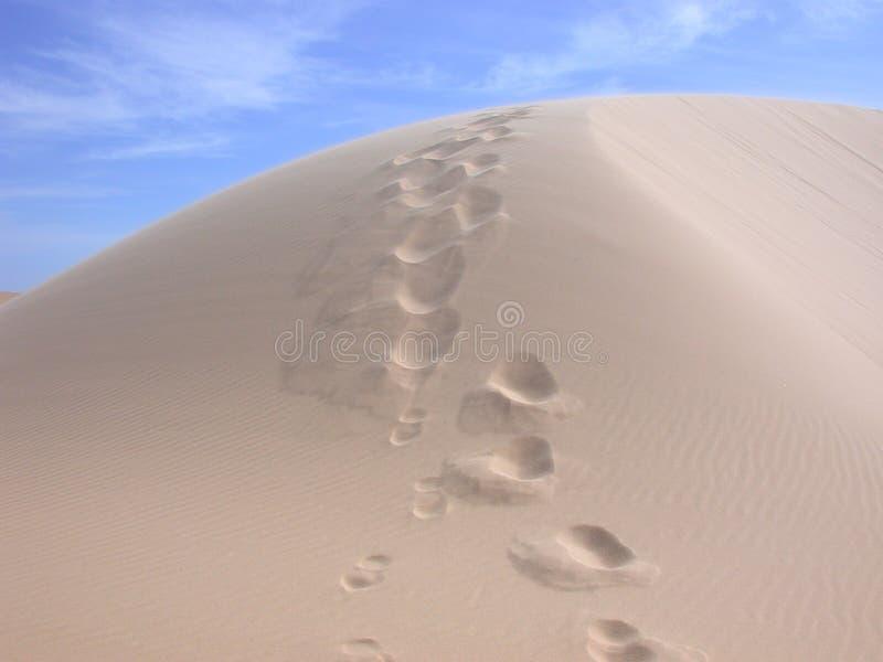 沙漠越南 库存图片