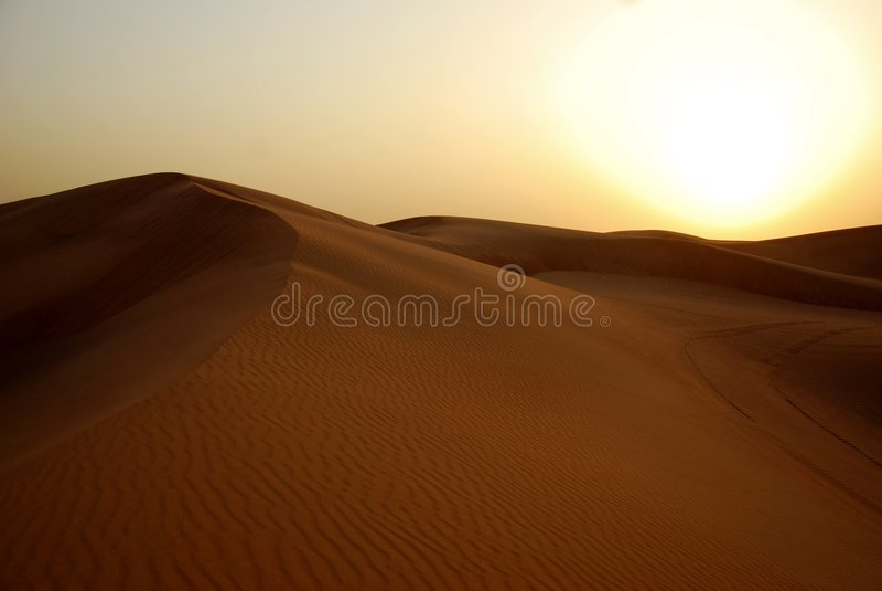 沙漠迪拜 免版税库存图片