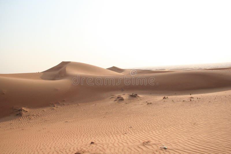 沙漠阿联酋 免版税图库摄影