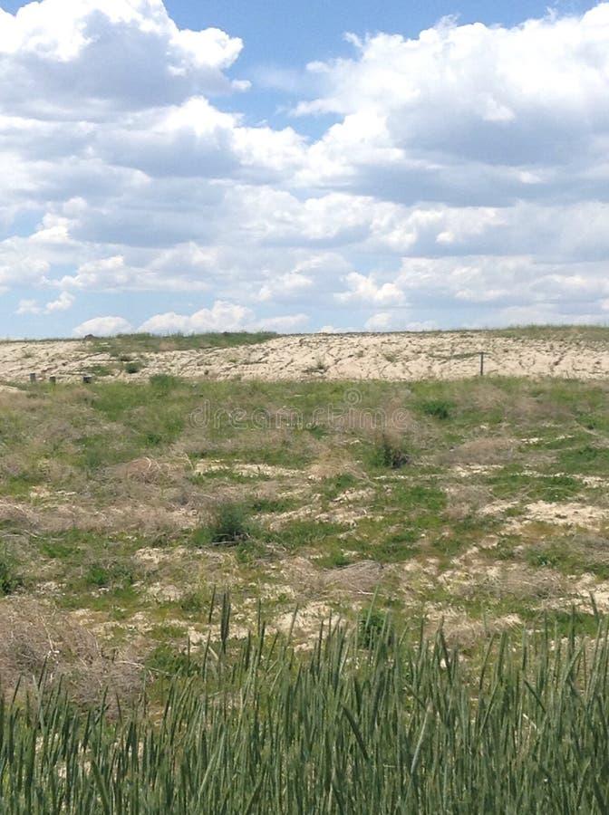 沙漠领域 库存图片