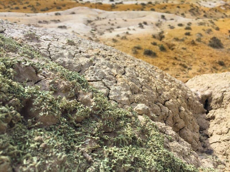沙漠风景特写镜头 地球上的火星的风景 二者择一地 俄国 免版税库存照片