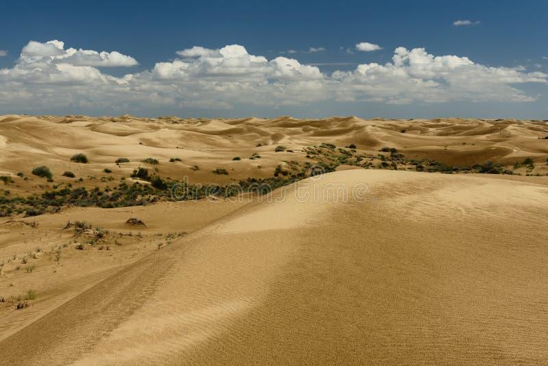 沙漠风景,Mangistau省,哈萨克斯坦 免版税库存图片