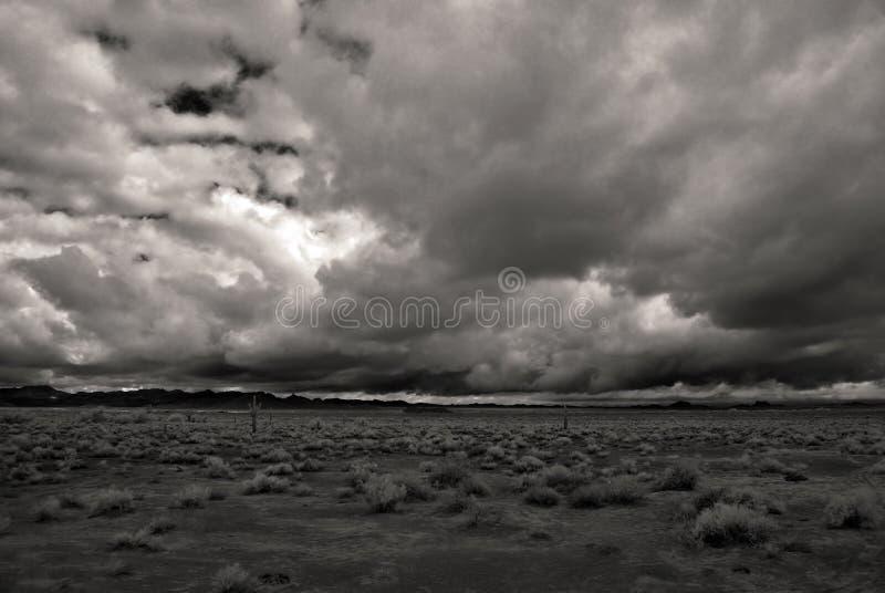 沙漠黑白照片风暴 免版税库存图片