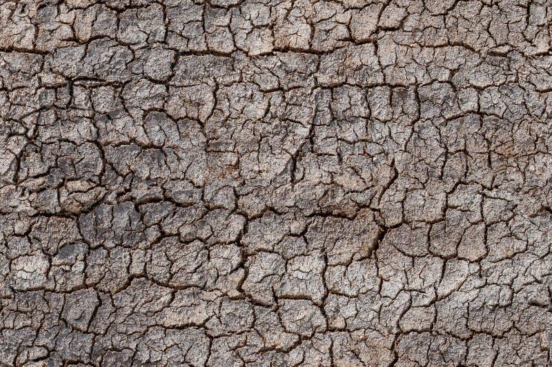 沙漠,破裂的土壤,环境侵蚀问题无缝的样式 免版税库存图片