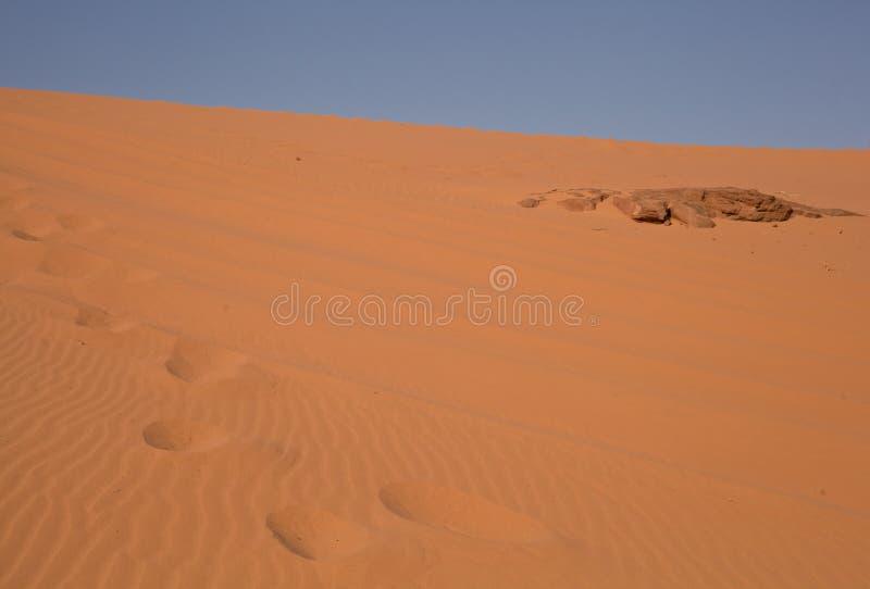 沙漠-约旦 免版税库存照片