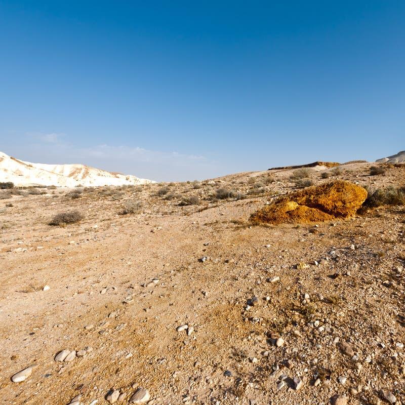 沙漠以色列negev 库存照片