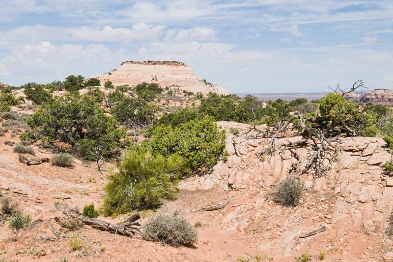 Download 沙漠 库存照片. 图片 包括有 沙漠, 峭壁, 天空, 石头, 横向, 犹他, 的treadled, 国家 - 15677656