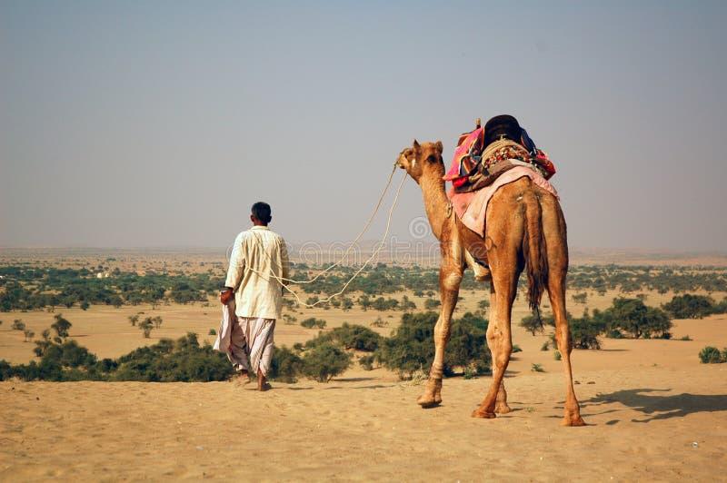 沙漠 免版税库存图片
