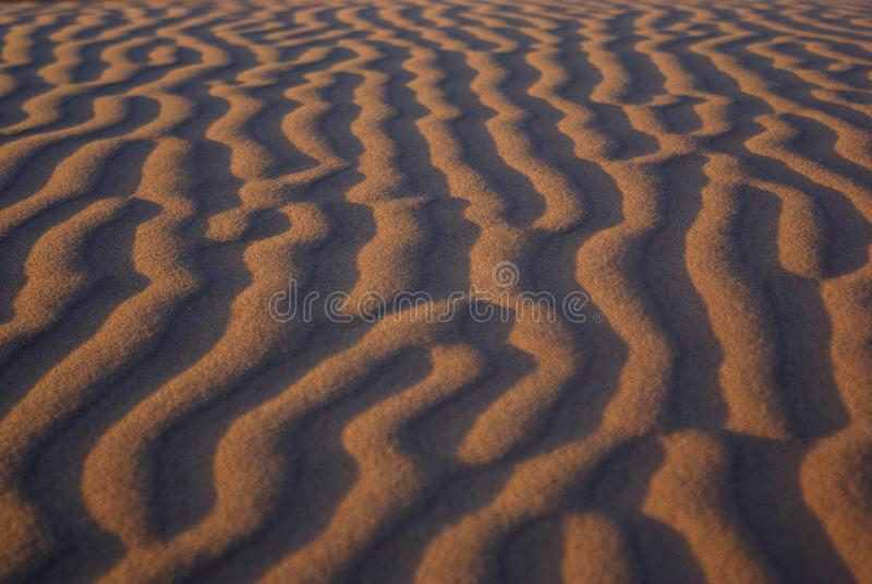 沙漠gobi 免版税库存图片