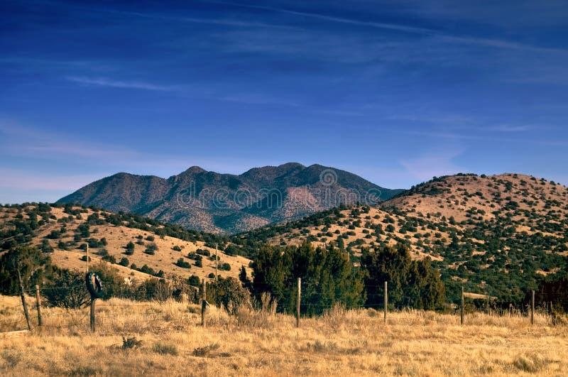 沙漠hdr新墨西哥的山 库存图片