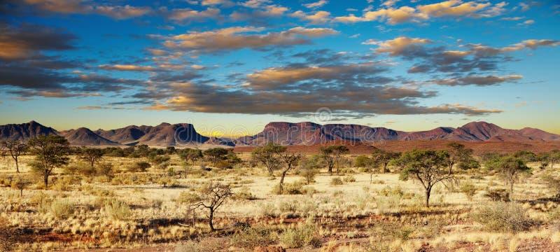 沙漠kalahari纳米比亚 库存图片