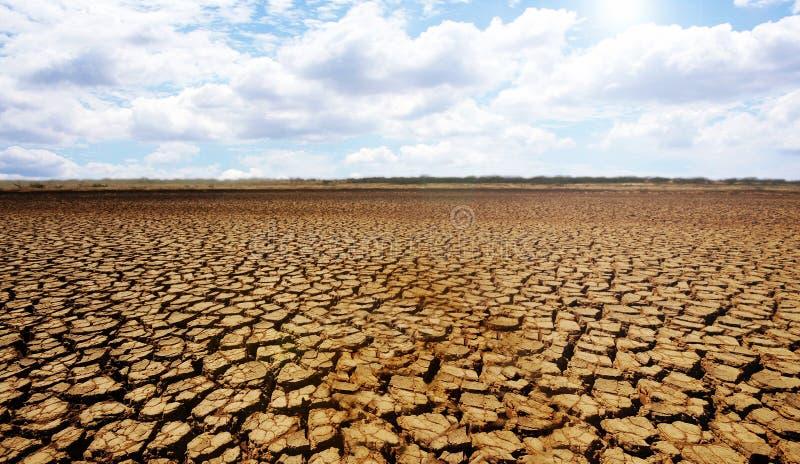 沙漠sarigua 免版税库存图片