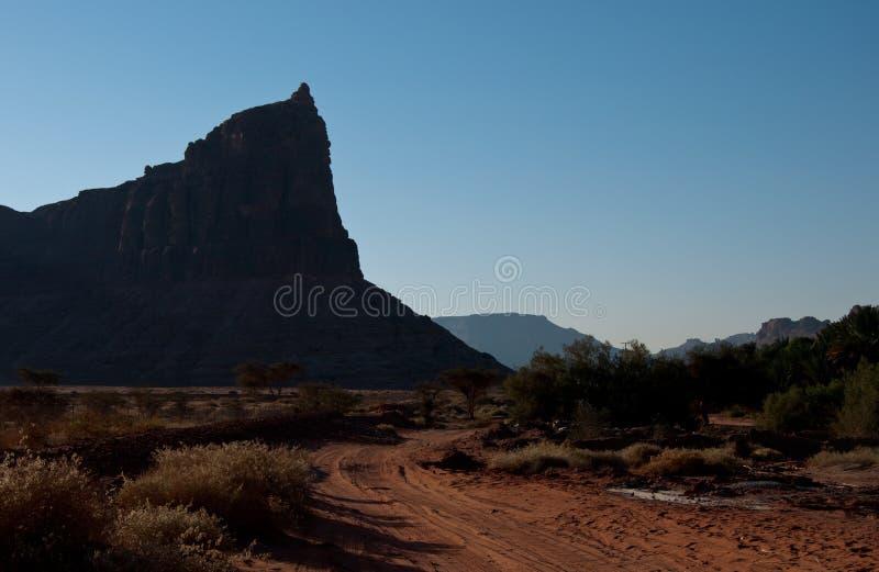 沙特阿拉伯考古学站点 免版税库存照片