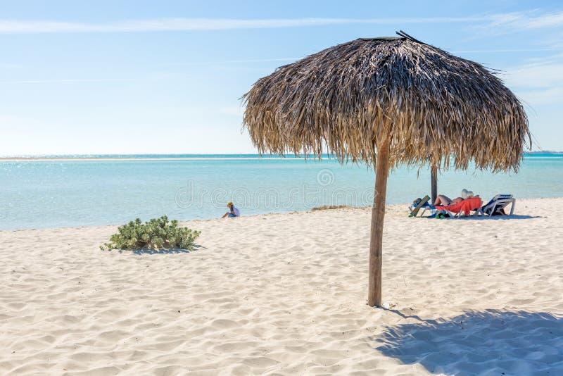 沙滩伞由棕榈叶制成在异乎寻常的海滩 免版税库存图片