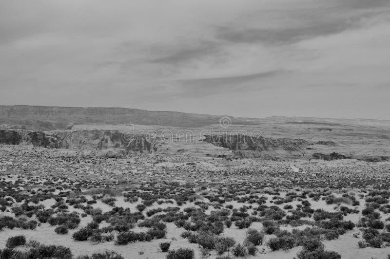 没有任何活的黑白沙漠 免版税图库摄影