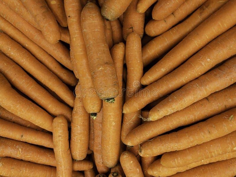 没有叶子的新鲜的干净的红萝卜在市场上 免版税图库摄影