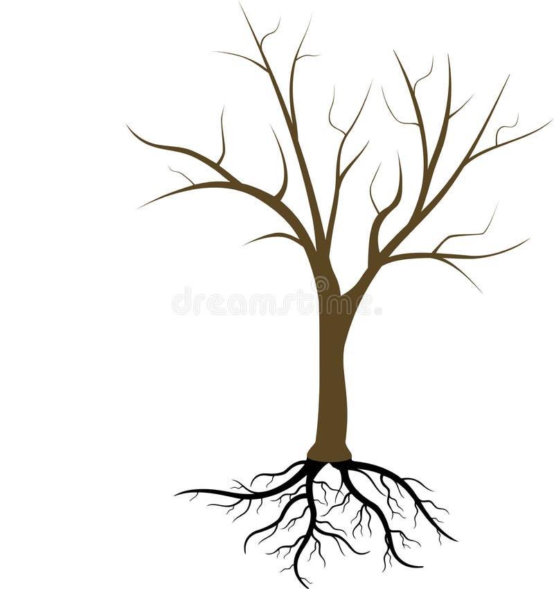 没有叶子的树 向量例证