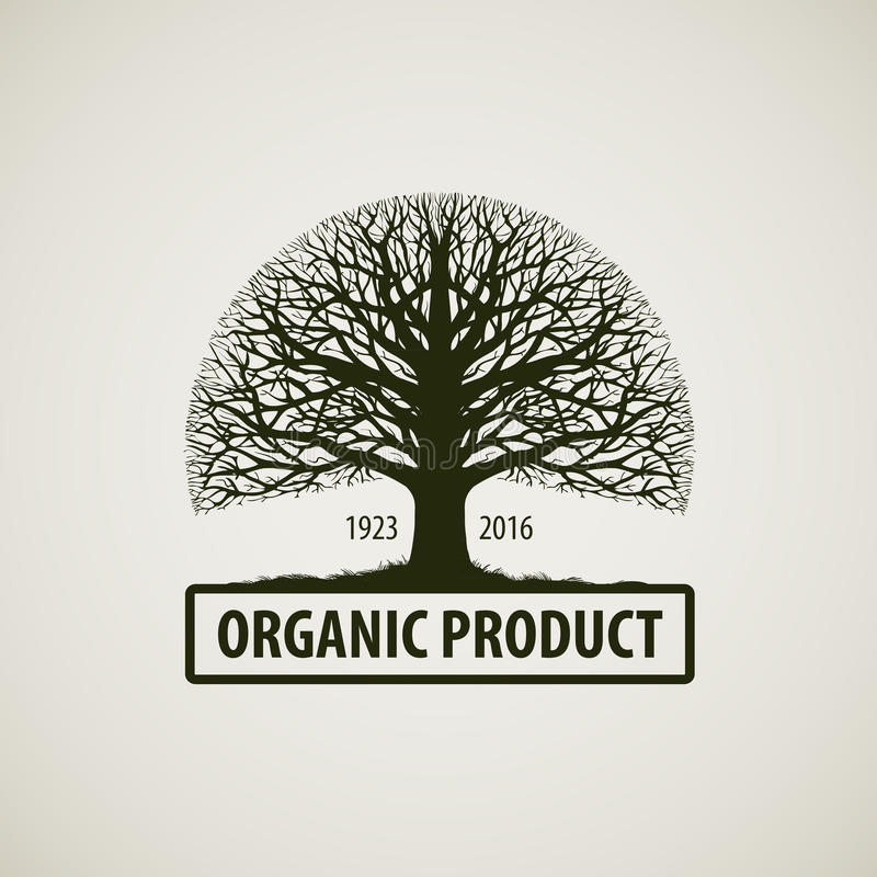 没有叶子的结构树 自然或生态商标 橡木象 有机产品 向量例证
