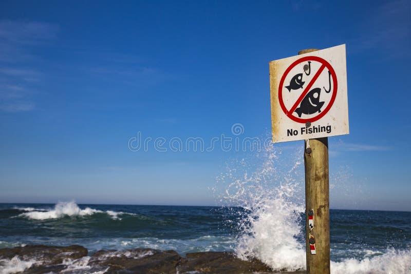 没有捕鱼 库存照片