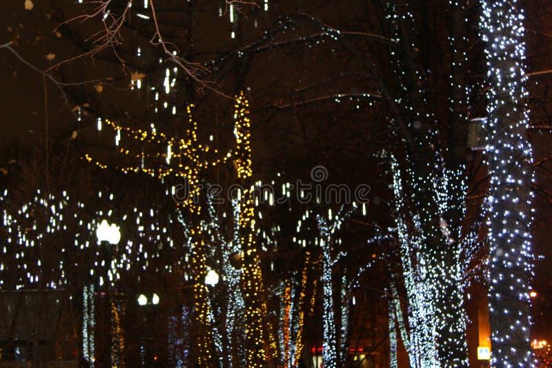 没有用在银色口气的诗歌选装饰的叶子的树圣诞节的反对夜空特写镜头 库存图片