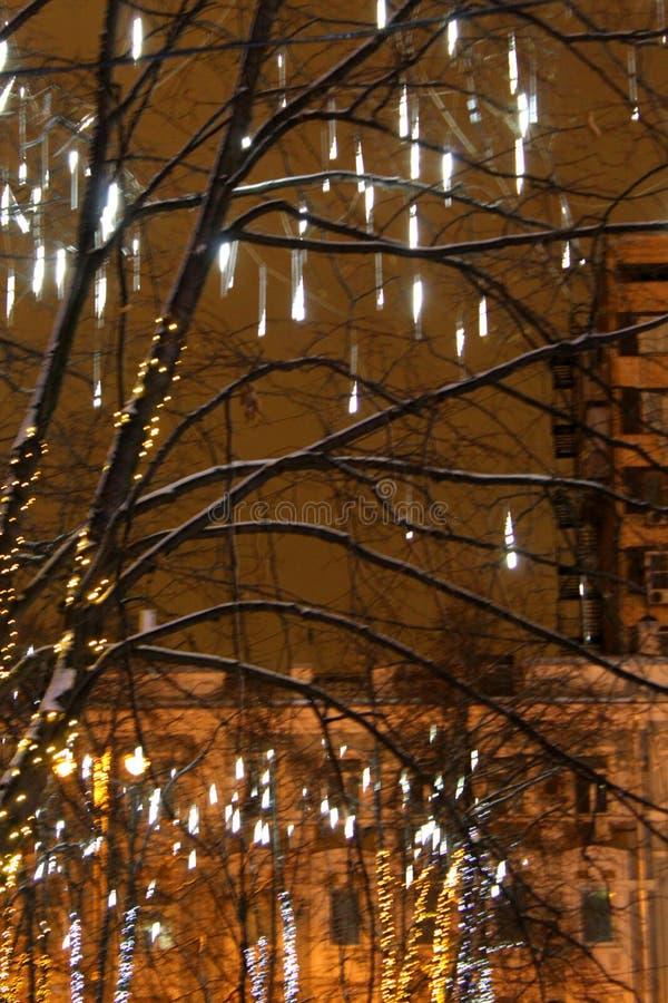 没有用在银色口气的诗歌选装饰的叶子的树圣诞节的反对夜空特写镜头 免版税图库摄影