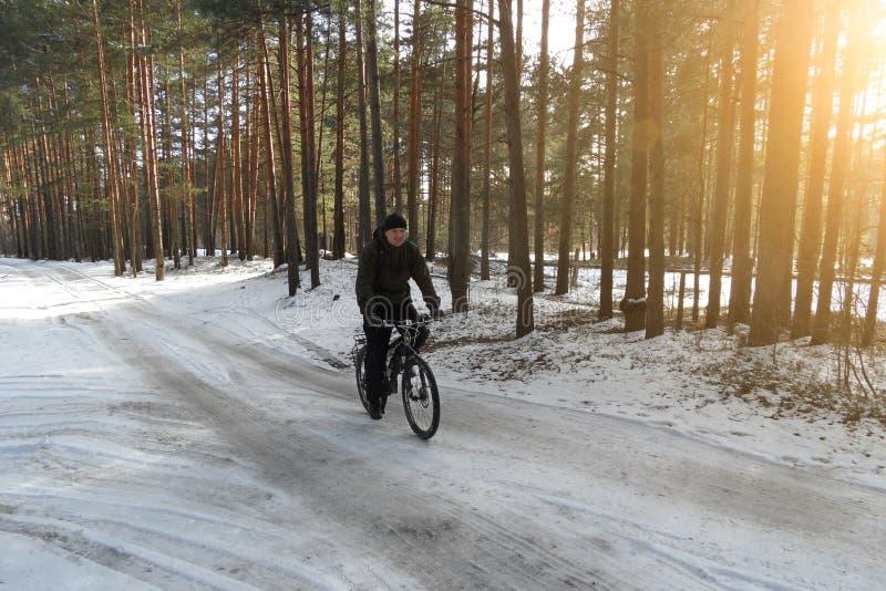没有盔甲乘驾的骑自行车者在自行车的积雪的森林公路在晴朗的春日 库存图片