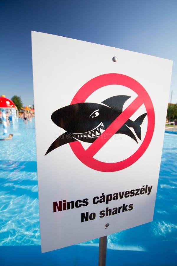 没有鲨鱼 库存例证