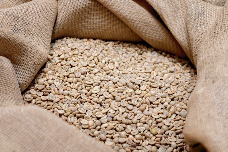 没烤的绿色,在袋子的咖啡豆由粗麻布制成 库存照片